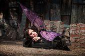 stock photo of faerys  - Faery in rustic scene sleeps in suitcase with black roses - JPG