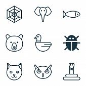Zoology Icons Set With Snake, Duck, Spider Web And Other Goose Elements. Isolated  Illustration Zool poster