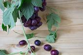 Bunches Of Fresh Ripe Red Grapes On A Wooden Background. Ancient Grapes. Red Wine Grapes. Dark Grape poster