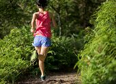 Young Fitness Woman Trail Runner Running On Forest Trail poster