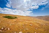 stock photo of samaria  - Green Oasis and Big Stones in Sand Hills of Samaria Israel - JPG