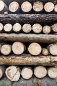 Woodpile Composition poster