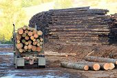 foto of logging truck  - A log truck delivers its load to a sawmill in Oregon - JPG