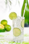 picture of alcoholic drinks  - Gin and tonic with lime twist alcoholic drink - JPG