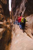 Hiking Narrow Trail poster