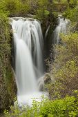 picture of spearfishing  - A waterfall in the Black Hills of South Dakota - JPG