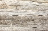 foto of cross  - Close up of Old wood texture background - JPG