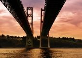 Under the Tacoma Narrows Bridge