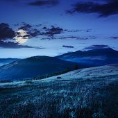 stock photo of moon-flower  - cold fog on meadow with grass and flowers in the mountains near the forest at night in moon light - JPG