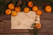 picture of tangerine-tree  - Still - JPG
