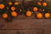 image of tangerine-tree  - Still - JPG