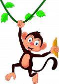 image of chimp  - illustration of Cartoon monkey hanging isolated on white - JPG