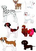 foto of spotted dog  - illustration of Cartoon dog collection isolated on white - JPG