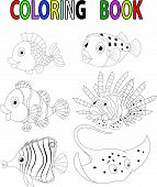 pic of clown fish  - illustration of Cartoon fish coloring book isolated on white vector - JPG