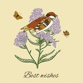 Постер, плакат: Vintage flower postcard