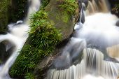 picture of jungle exotic  - Small waterfall at the jungle of bako national park in malaysia borneo - JPG