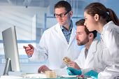 picture of scientist  - group of scientists working at the laboratory - JPG