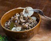 pic of fungus  - Marinated honey fungus in brown bowl on wooden table - JPG
