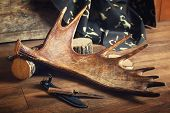 picture of antlers  - Moose antler with hunting knives on wooden background - JPG