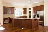 pic of opulence  - opulent kitchen with dark wood and stainless appliances - JPG