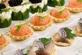 pic of crudites  - Small toast with raw herring and salmon - JPG