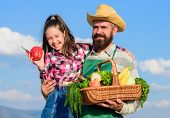 Man Bearded Rustic Farmer With Kid. Father And Daughter Hold Basket Harvest Vegetables. Gardening An poster