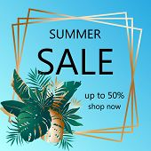 Summer Sale. Advertising Banner With Text And Color Green Tropical Leaves In Golden Frame. Exotic Bo poster