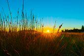 Intense Sunrise At Mount Maunganui Back Lights Landscape Main Beach, Tauranga New Zealand. poster