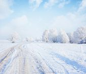 stock photo of icy road  - Frozen trees and road in a field - JPG