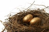 stock photo of nest-egg  - A couple gold nest eggs for the idea of a wealthy retirement fund - JPG