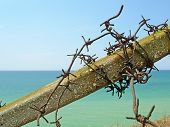 image of tyranny  - Barbed wire and blue sea in Crimea Ukraine - JPG