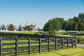 stock photo of farm landscape  - Green pastures of horse farms with black wooden fence on foreground - JPG