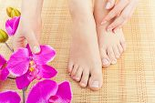 picture of pedicure  - Beautiful manicured feet with pedicures and flowers - JPG