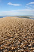 picture of shingles  - shingle beach of Chesil bank in Dorset - JPG