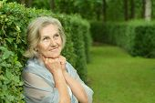 picture of beautiful senior woman  - Portrait of a beautiful senior woman in green park - JPG