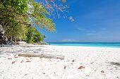 foto of crystal clear  - Crystal clear sea and white sand beach at Tachai island Andaman Thailand - JPG