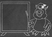 stock photo of wise  - Wise owl teacher draw on black chalkboard - JPG