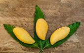 pic of mango  - three ripe mangoes on mangoes leaf stock photo - JPG