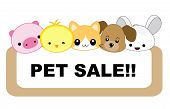 stock photo of petting  - Cute pets with sale message board - JPG
