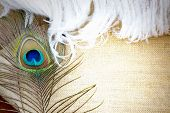 picture of feathers  - peacock feather and white soft feather on sackcloth background with space for text - JPG