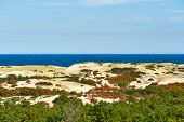 picture of cape-cod  - Landscape with sand dunes at Cape Cod - JPG