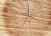 stock photo of lumber  - Stack of new wooden studs at the lumber yard - JPG
