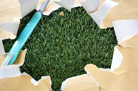 stock photo of grass-cutter  - cutter and torn recycle paper on green grass background - JPG