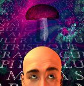 foto of shroom  - Mushroom and man - JPG