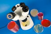 Scientific microscope and petri dishes for scientific research on blue background poster