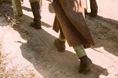 Re-enactors Dressed As World War Ii Russian Soviet Red Army Soldiers Goes Along Road. Soldier Of Wwi poster