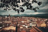 Guinigi Tower and Lucca rooftop view with historic buildings in Italy. poster