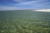 Long Snow-white Beach Bordered By Aqua Blue Ocean Waters. Shell Beach Is One Of Only Two Shell Beach poster
