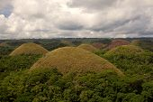 picture of chocolate hills  - The Chocolate Hills of Carmen Bohol Islands Philippines number between 1500 and 1700 - JPG