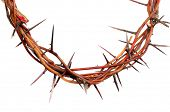 stock photo of humility  - crown made of thorns isolated on white background - JPG